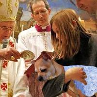 """Iglesia Católica permitirá bautizar a los """"perrijos"""" de las parejas como estrategia para ganar más adeptos"""