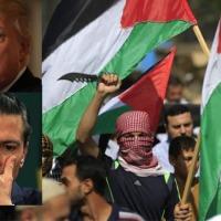¿Palestina planea iniciar guerra para ayudar México a recuperar el estado Texas quitándoselo a EU?